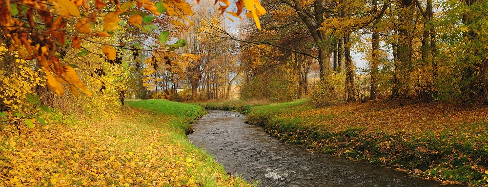 autumn_river_forest_trees_landscape_2144x1424
